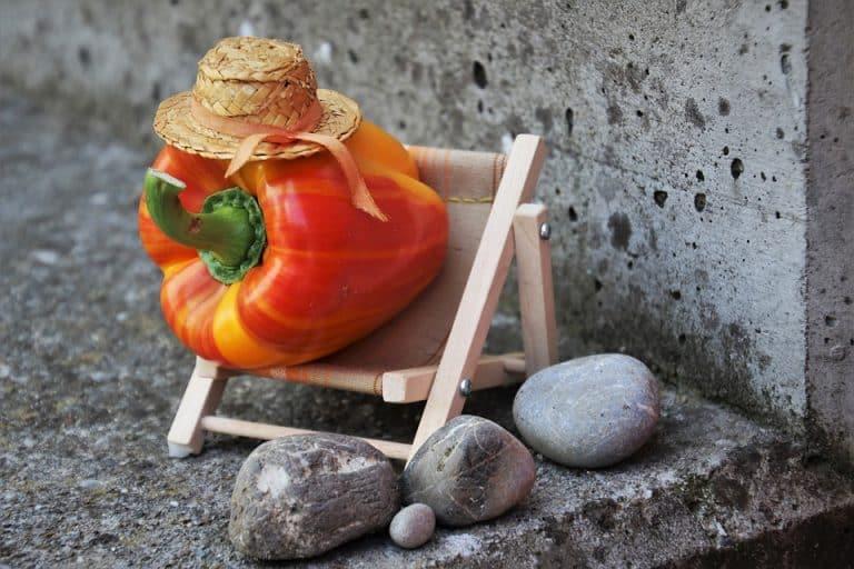 Psychologie hubnutí: Zdravý vztah k jídlu